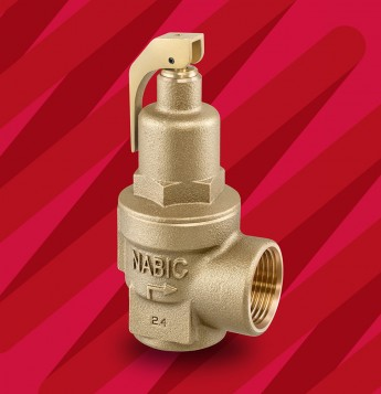 Fig 542 Safety Relief Valve