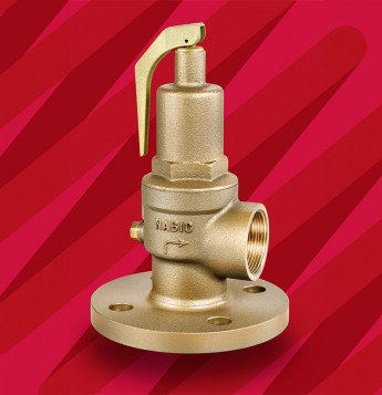 Fig 542F Safety Relief Valve